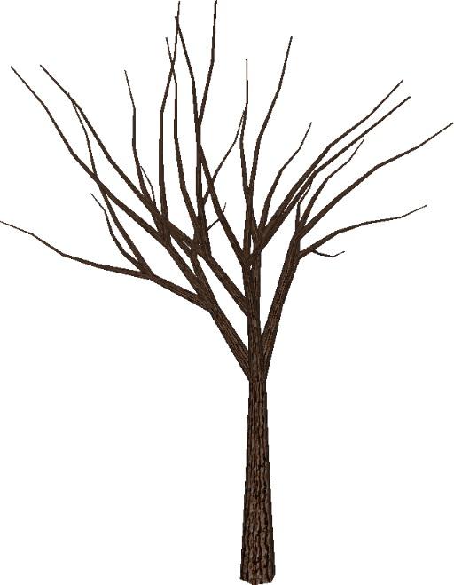 Fantastisch Baum Vorlage Keine Blätter Bilder - Beispiel ...